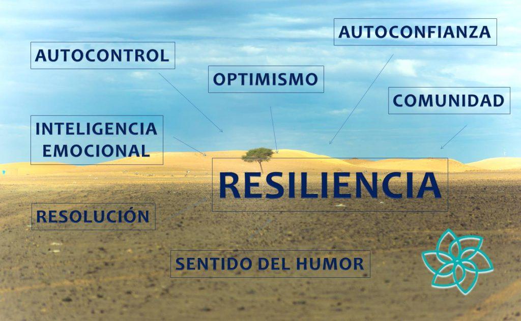 La práctica regular del mindfulness aumenta tu capacidad natural de resiliencia y tu calma mental